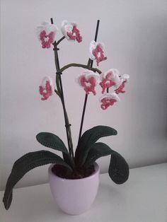 orchidee gehaakt