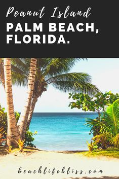 Peanut Island in West Palm Beach, Florida - 5 Reasons Why You Need To Go Now! Peanut island is an accessible island off of blue hearon bridge in west palm beach. Visit the sandbar, take the water taxi, go fishing, have a beach day, and enjoy the Florida sunshine!