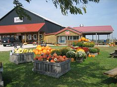 Evans Orchard and Cider Mill, Farm Market and Pumpkin Patch Too! In Georgetown, Kentucky.