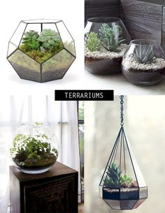 Awesome 30 Inspirational Indoor Plants Collection To Clean Your Room Air https://freshouz.com/30-inspirational-indoor-plants-collection-clean-room-air/ #home #decor #Farmhouse #Rustic