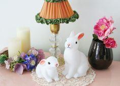 Rabbit Night Lights / Kino Diary blog