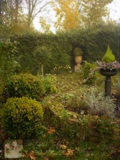 Roses & other seasons: The little french country cottage: In the golds and mists of autumn Le Blog Du Goumy, Ghost World, Big Garden, French Country Cottage, Outdoor Living, Outdoor Decor, Autumn Garden, Autumn Trees, Beautiful Gardens