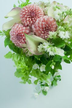 世界一好きな花屋といってもらえるように blog du I'llony 芦屋と南青山に店を構える花屋アイロニーオーナー日記