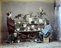 by Adolfo Farsari (born arrived in Japan 盆栽 - Bonsai Japanese Pics, Vintage Japanese, Japanese Art, Japanese Culture, Japanese Style, Nagasaki, Vintage Pictures, Old Pictures, Photos Du