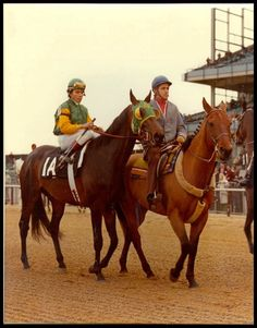 Sham- he finished second to Secretariat in the Kentucky Derby and the Preakness, but faded in the  five horse Belmont and finished last. He was a great horse.