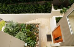 Google Image Result for http://www.bossgardenscapes.com.au/images/hamilton-contemporary-6-terraced-garden.jpg