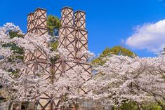 関東から簡単に行けちゃう静岡には様々な魅力が詰まっています。本記事では富士山に浜名湖など鉄板観光地を押さえつつ、今話題の夢の架け橋、初島(って何...??)といった穴場観光スポットまで詳しく伝えていきますよ♪今回は【絶景編】【体験編】といった二つの切り口から静岡の魅力をドドンとご紹介!