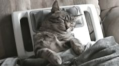 """""""I just need me time."""" 