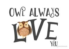 Owl Love: available as t shirt, hoodie, graphic tee, stickers,  phone cases, prints, cards, posters, home décor, pillows, totes, laptop skins, duvets, coffee mugs, travel mugs, leggings, pencil skirts, scarves, tablet cases, bags, notebooks, journals, canvases, metal prints, drawstring bags, phone wallets, contrast tanks, Chiffon tops, graphic t shirt dress, a-line dress, wall tapestry, clocks, acrylic block