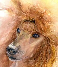 Poodle Art Work - Poodle Forum - Standard Poodle, Toy Poodle, Miniature Poodle Forum ALL Poodle owners too!
