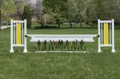 Horse Jumps - Tall grasses in the PolyPro flower box