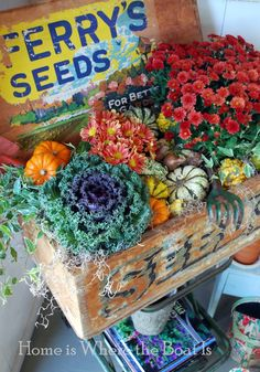 Vintage seed box planted for fall with mums, gourds, ornamental kale, and mini pumpkins! Fruits Decoration, Ornamental Kale, Decoupage, Vintage Seed Packets, Fall Containers, Fall Plants, Potted Plants, Autumn Garden, Planter Boxes