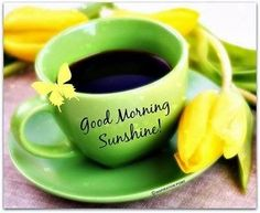 ★ Limey Green ★ Good Morning Everyone from your admins Teresa Blair and Sue Ann Moran. https://www.facebook.com/DailySmiles/photos/a.381582235277888.1073741835.158638357572278/584868034949306/?type=1
