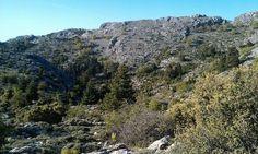 La Ley de Espacio Protegidos cumple 25 años con la declaración de 247 enclaves naturales en Andalucía http://www.rural64.com/st/turismorural/La-Ley-de-Espacio-Protegidos-cumple-25-anos-con-la-declaracion-de-247--5922