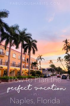 The ultimate guide to exploring Naples, Florida. Also known as 'Paradise Coast,' Naples is stunning and the perfect destination for families of any age! Visit Florida, Florida Vacation, Florida Travel, Italy Vacation, Naples Zoo, Naples Florida, Tampa Florida, South Florida, Romantic Vacations