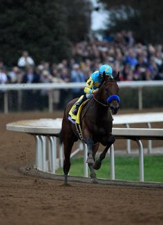 American Pharoah and Victor Espinoza win the Breeders' Cup Classic. Photo Breeders' Cup Ltd.