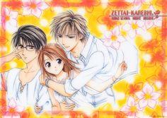 Zettai Kareshi (Absolute Boyfriend) by Watase Yuu