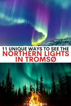 Want to see the Northern lights in Norway? Here are the best Tromso Northern lights tours to take! northern lights in tromso | northern lights in northern norway | norway northern lights | tromso northern lights tours | northern lights tours in tromso | where to see the northern lights in norway | aurora tours in tromso | aurora borealis in tromso | aurora chasing tour in tromso | northern lights chasing tour in tromso | what to do in tromso at night Tromso Northern Lights, Northern Lights Tours, See The Northern Lights, City Break, Culture Travel, Aurora Borealis, Night, Northern Lights