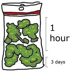 Cannabis has been used by humans for thousands of years. It is also referred to as weed. Cannabis is also used to make hemp. Weed Humor, Stoner Humor, Weed Memes, 420 Memes, Weed Stickers, Berlin Tattoo, Puff And Pass, Thing 1, Smoking Weed