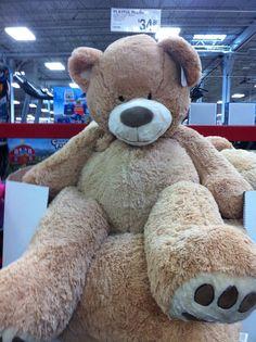 93 Giant Stuffed Bear At Costco I Want Pinterest
