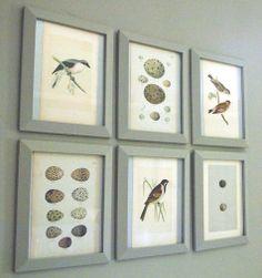 framed vintage bird imagery