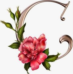 Alfabetos Lindos: Alfabeto rosas lindo! Abc letras cor de rosa com flores com rosas!