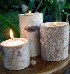 Set of Three Natural Birch Tea Light Holders   $12