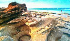 Washington Oaks State Park Beach