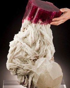Large Intensely Colored Tourmaline Crystal   #Geology #GeologyPage #Mineral Geology Page www.geologypage.com