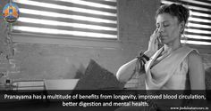 Pranayama has a multitude of benefits from longevity, improved blood…