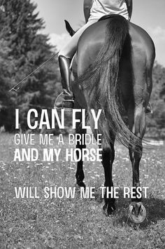 Keep the bridle. Sam and I can fly bareback and bridleless. Yeah, we're just that close.