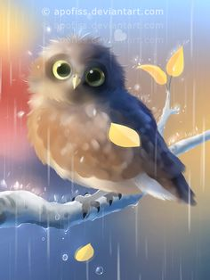autumn, rain, colors and owls! I'd like to think the owl enjoys the rain :] there is also a complementing scenery artwork in works. used photoshop and paint tool sai ( for more quest...
