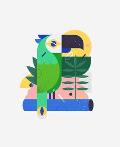 Brazilian parrot in the Jungle. Illustration by Morgane Sanglier