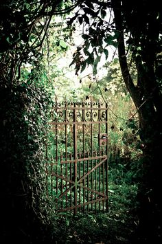 The gate you must swing open? The deep, dark trees and shade? The patch of sky just beyond where the secrets are kept? Does that make it a secret garden?