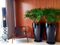 [New] The Best Home Decor (with Pictures) These are the 10 best home decor today. According to home decor experts, the 10 all-time best home decor. Feng Shui, Indoor Plants Low Light, Garden Makeover, Pottery Designs, Interior Exterior, Container Plants, Low Lights, Plant Decor, Decoration