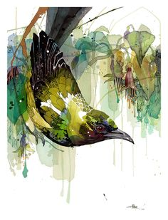 Official Rachel Walker Page. New Zealand watercolour, spray paint, pen and ink artist creating splashy celebrations of native and rare animals. Watercolor And Ink, Watercolor Paintings, Watercolor Trees, Watercolor Portraits, Watercolor Landscape, Abstract Paintings, Watercolours, Illustrations, Illustration Art