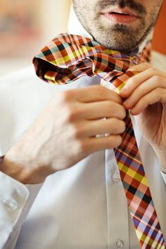 Plaid Ties.  ZsaZsa Bellagio – Like No Other: In the Men's Room