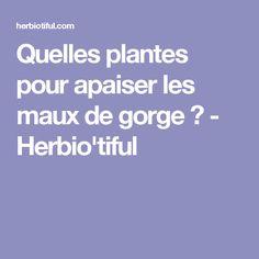 Quelles plantes pour apaiser les maux de gorge? - Herbio'tiful