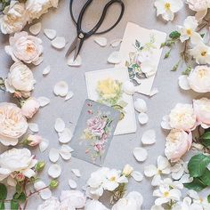 Adore this image captured by the very talented photographer @georgiannalane featuring beautiful @david_austin_roses and vintage rose postcards. Thank you so much Georgianna for taking part in this month's #UnderTheFloralSpell competition on Instagram.  | #roses #rosesofinstagram