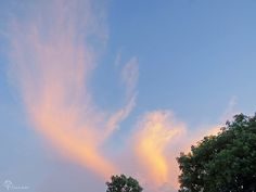 During the June 20.16 Solstice Sunset these clouds gently moved above me. They looked like Angel Wings <3 Toronto Photo by Kimberly Mallett