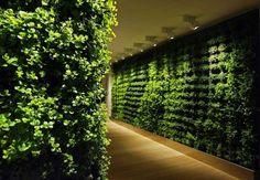 mur végétal intérieur et lumière artificielle