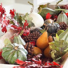 Make your autumn arrangement look complete with a combination of fruits, pinecones, leaves and gourds.