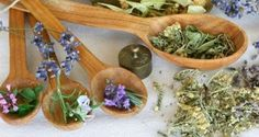 3-old-to-reduce-stress-and-anxiety-Herbs.jpg (600×320)