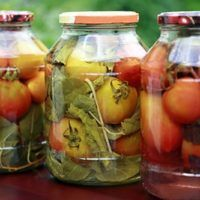 Homemade Tomatoes Stock Photo (Edit Now) 66229150 Russia Food, Refrigerator Pickle Recipes, Food Plus, Tasty, Yummy Food, Food Categories, Sauerkraut, Kimchi, Cold Brew