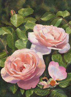 Beautiful Rose Clair Renaissance Garden Painting of Roses in watercolor