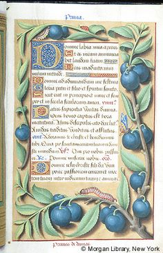 Book of Hours, MS M.732 fol. 28r - Images from Medieval and Renaissance Manuscripts - The Morgan Library & Museum. I'm plum crazy about this illumination.