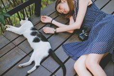 DCView Mina │ Cateyes