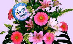 Floristerias de Logroño y envio de flores a domicilio en La Rioja