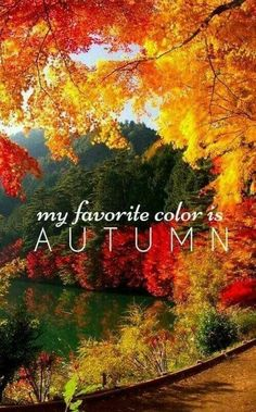 Favorite color = Autumn Favorite color = Autumn More from my An Amazing Home Surrounded by Farmland with a Natural Landscape Gefällt 55 Mal, 11 Kommentare – Natasha Shiggaon Dark Autumn, Autumn Cozy, Mabon, Seasons Of The Year, Best Seasons, Autumn Scenes, Autumn Aesthetic, Fall Wallpaper, Fall Pictures