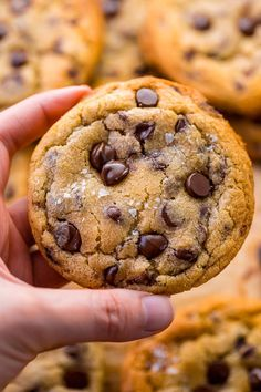 Say hello to the BEST Chocolate Chip Cookie Recipe! They're thick, chewy, and loaded with chocolate chips. Brown butter gives them great flavor! Homemade Chocolate, Chocolate Recipes, Chocolate Chips, Cookie Recipes, Dessert Recipes, Yummy Recipes, Best Chocolate Chip Cookies Recipe, Chocolate Cookies, Clean Eating Snacks
